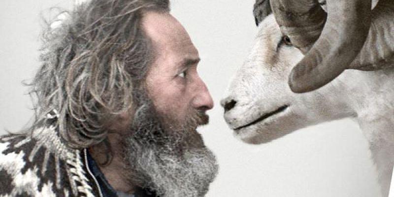【影評】《羊男的冰島冒險》冰島人情的冰封與冰釋
