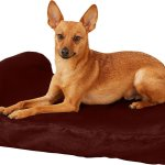 Big Barker Jr Headrest Edition Orthopedic Pillow Bed Burgundy Small Chewy Com