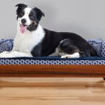 Furhaven Cat Dog Bed Frame Walnut Large Chewy Com
