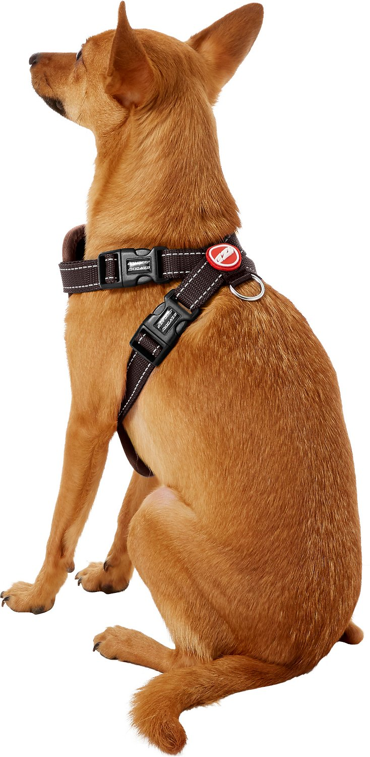 Ezydog Chest Plate Dog Harness Chocolate Small
