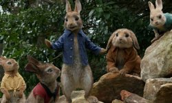 Why Peter Rabbit Is Deeper Than You Suppose, In accordance To Elizabeth Debicki