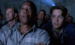 Why The Shawshank Redemption Nonetheless Resonates With Audiences Right this moment, In accordance To Tim Robbins