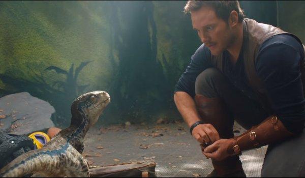 Jurassic World: Fallen Kingdom Baby Blue and Owen bond
