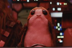Why Rian Johnson Created The Porgs For Star Wars: The Final Jedi