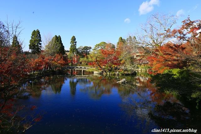 ▌京都賞楓▌必訪名所♥永觀堂♥日楓、夜楓都很迷人