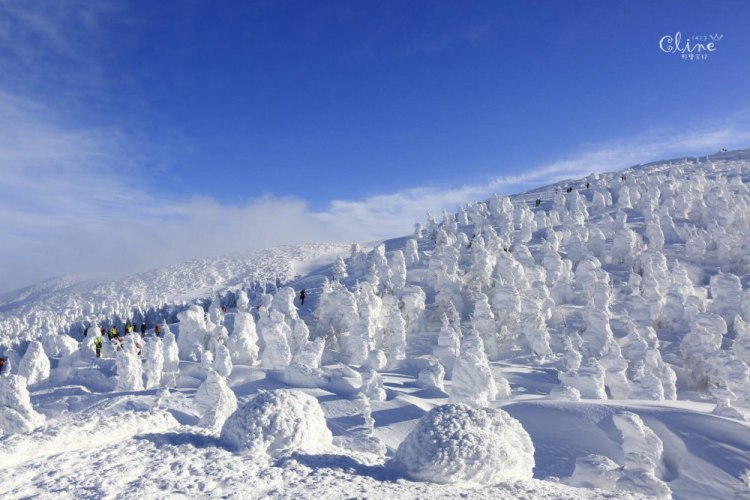 ▌日本。東北▌藏王樹冰交通指南。從東京到藏王樹冰交通攻略