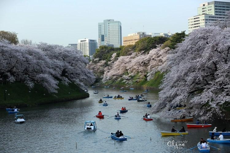 ▌東京賞櫻▌千鳥之淵。陽光哥最喜歡的東京都賞櫻景點之一~璀璨的夜櫻超級漂亮