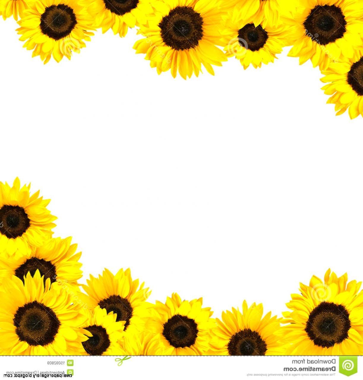 90+ Sunflowers Clipart   ClipartLook (1222 x 1278 Pixel)