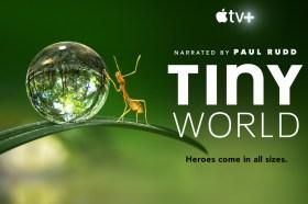 Apple TV+全新紀錄片系列《你不知道的小小世界》首六集上映