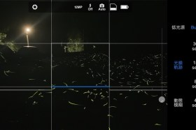 4/22世界地球日50周年!生態攝影師不藏私教大家怎麼用iPhone拍螢火蟲