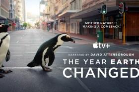 慶祝世界地球日!Apple TV+ 將首播《這一年,地球變得不一樣》與新一季的《你不知道的小小世界》和《探索夜色大地》