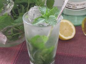 ハーブ:炭酸水のミント&レモンウォーター
