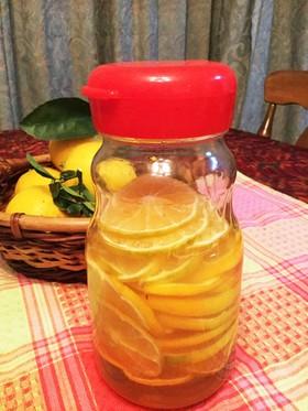 今年の我が家のレモンで蜂蜜漬け!