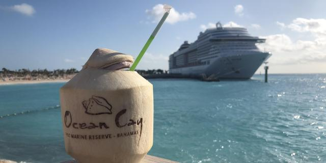 Drink at Ocean Cay MSC Marine Reserve (Photo: Brittany Chrusciel/Cruise Critic)