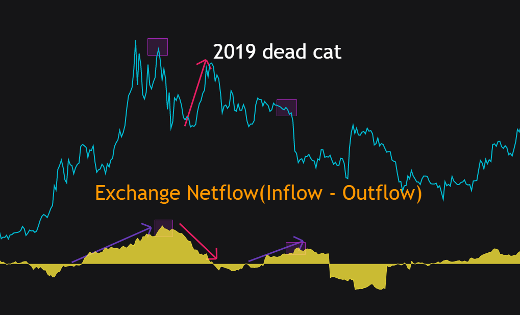 Bitcoin 2019 dead cat