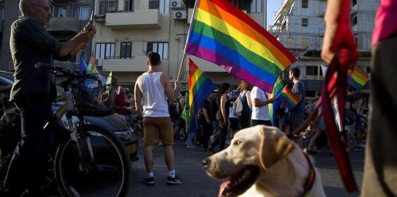 matrimonio homosexual legal en costa rica 1