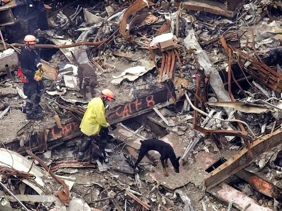 datos que no conocias sobre el atentado a las torres gemelas 4
