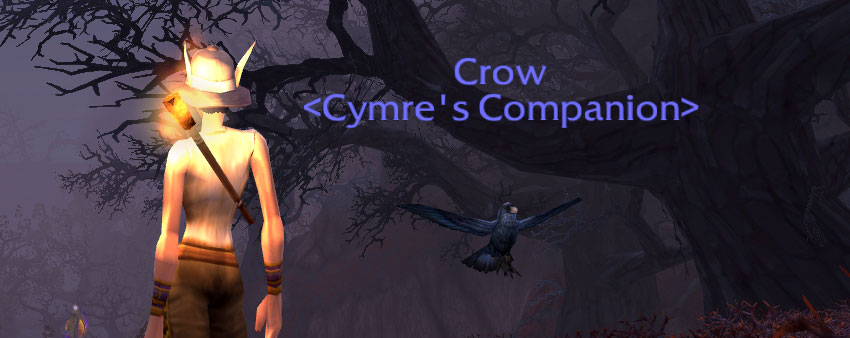Darkmoon Crow