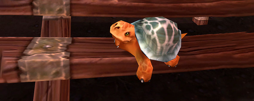 DarkmoonTurtle Darkmoon Mounts and Pets