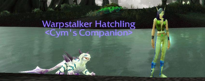 Warpstalker Hatchling
