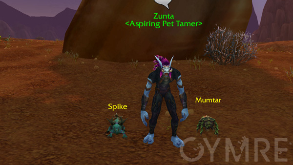 Zunta Battling Your First Pet Tamers