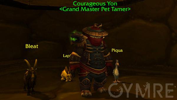 Courageous Yon