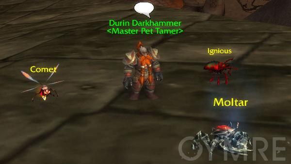 Durin Darkhammer