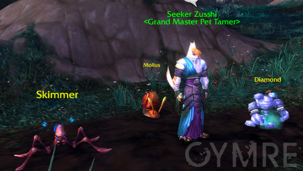 Seeker Zusshi
