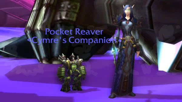 Pocket-Reaver