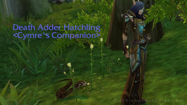 Death Adder Hatchling