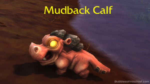 Mudback Calf