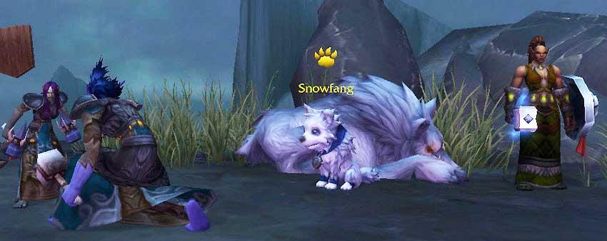 Snowfang in the Shaman Order Hall