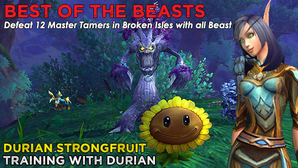BeastDurian Power-Levelling on the Broken Isles