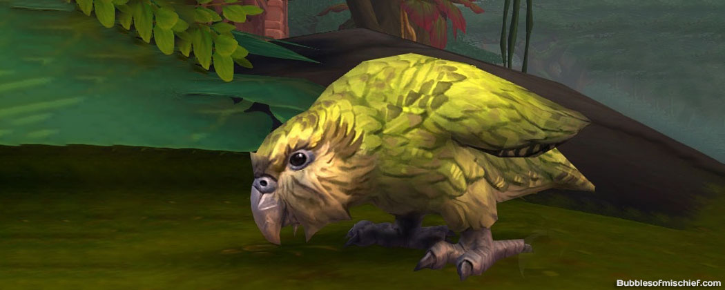 Island Expedition Pets