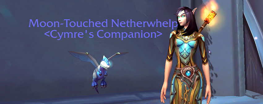 Moon-Touched Netherwhelp