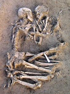 https://i2.wp.com/img.dailymail.co.uk/i/pix/2007/02_1/skeletonsDM060207_228x304.jpg