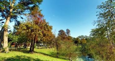 【台南景點】宛如置身於國外的美妙風景!藏於市區內的落羽松小秘境:巴克禮紀念公園