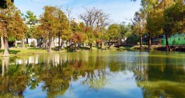 【台南東區】宛如置身於國外的美妙風景!藏於市區內的落羽松小秘境:巴克禮紀念公園