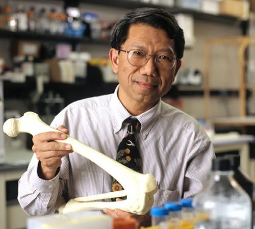 Rocky Tuan, director of the Center for Cellular and Molecular Engineering and professor and executive vice chairman for orthopaedic research at the university's School of Medicine, has used a novel 3D printing method to create the first example of living human cartilage grown on a laboratory chip.   (Source: University of Pittsburgh)
