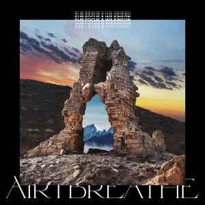 Sub Focus & Wilkinson - Air I Breathe (2020, File) | Discogs