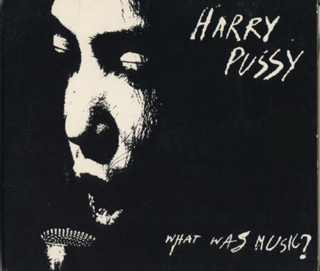 Harry Pussy What Was Music