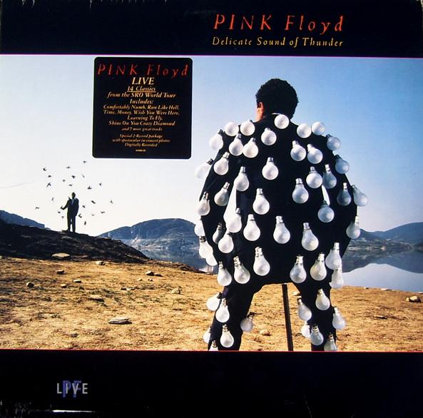 Pink Floyd Delicate Sound Of Thunder Vinyl LP Album Discogs