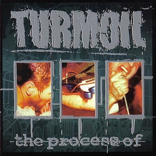 Turmoil - The Process Of (2014, Gold, Vinyl) | Discogs