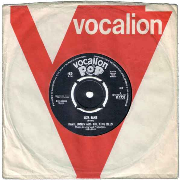 Davie Jones & The King Bees Liza Jane album cover