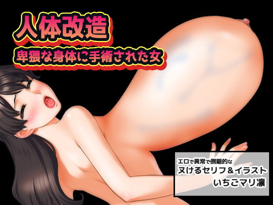 [MAKE3D] 人体改造~卑猥な身体に手術された女