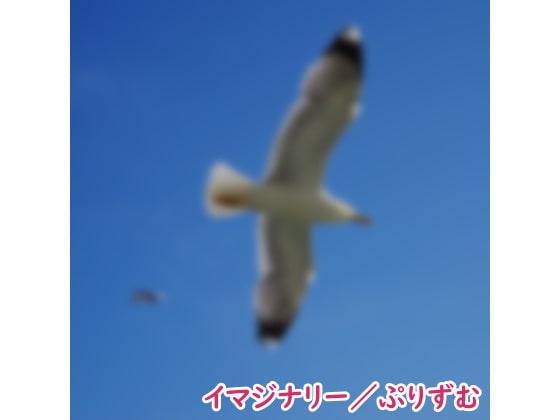 [なないろぼっくす] 【シングル】イマジナリー/ぷりずむ