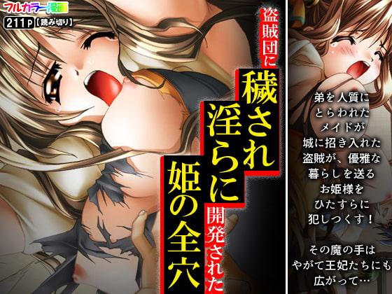 [アロマコミック] 盗賊団に穢され淫らに開発された姫の全穴