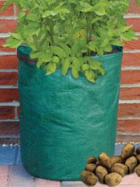 Sacco per piantare le patate