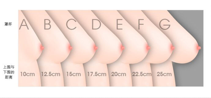 【大家都在問】究竟注入多少脂肪可以大一個罩杯呢?