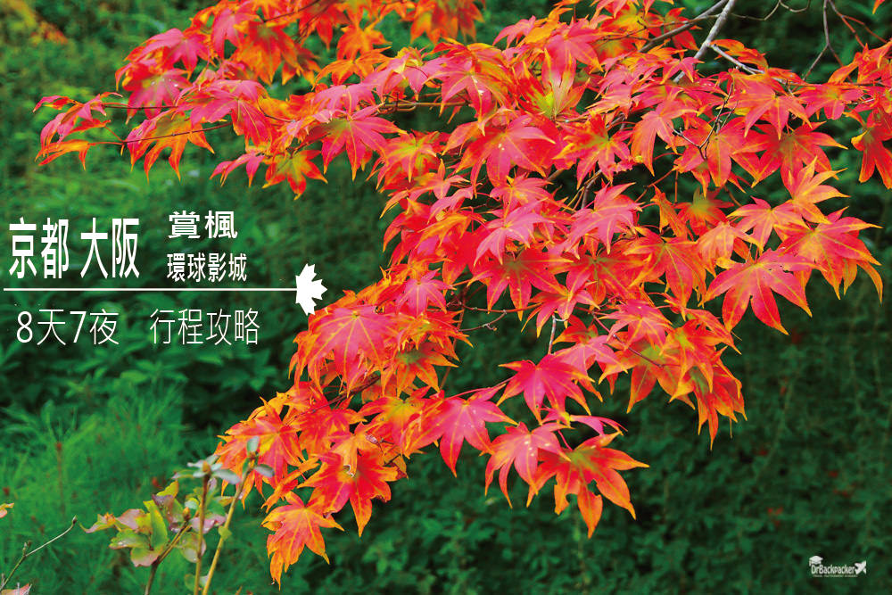 京都大阪自由行   八天七夜 京阪+環球影城+賞楓 行程、景點、交通、住宿攻略